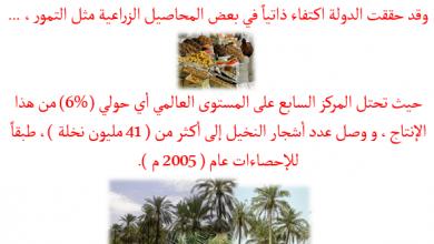 صورة بوربوينت : نماذج من الأنشطة الاقتصادية في دولة الإمارات العربية المتحدة