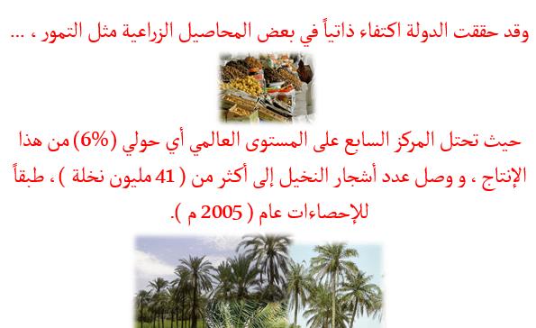 الأنشطة الاقتصادية في دولة الإمارات العربية المتحدة