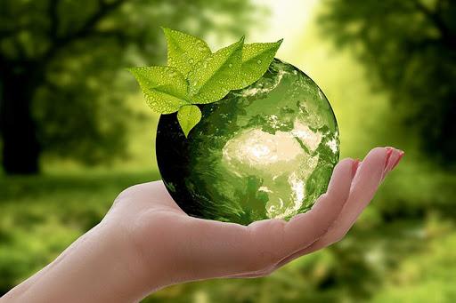 البيئة