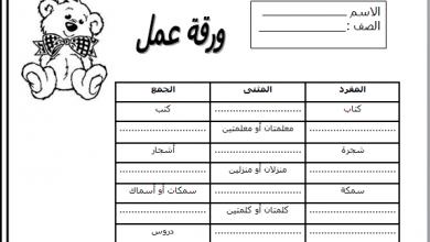 صورة ورقة عمل عن درس المفرد والجمع والمثنى فى اللغة العربية للصف الخامس