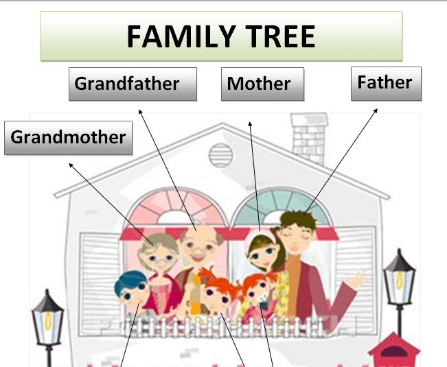 شجرة العائلة family tree